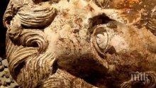 В Египет откриха бюст на император Марк Аврелий