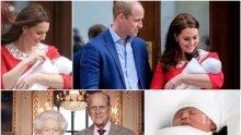 НА ОПАШКАТА ЗА ТРОНА! Какво е кралското бъдеще на малкия Луи Артър Чарлз