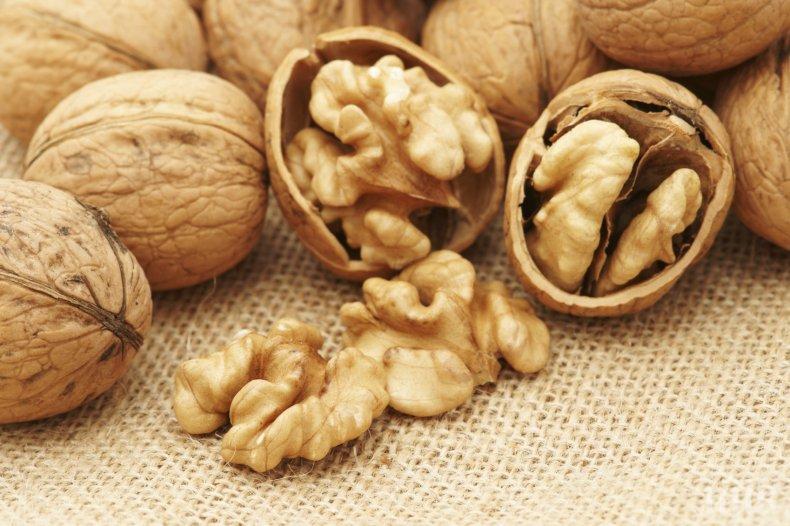 Орехите подобряват мъжката плодовитост