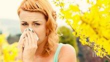 Всеки трети българин страда от алергия - как да победим сенната хрема и полените от дърветата и тревите?