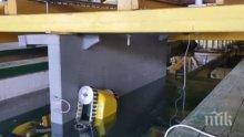 В Русенския институт разработиха робот, който открива взривове по движещи се кораби