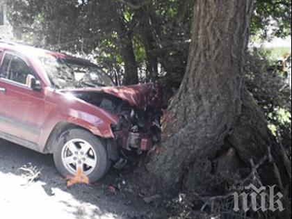 Шофьор загина на място след челен удар в дърво
