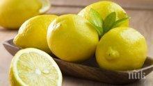 Лимонът – този безценен плод за тялото и домакинството