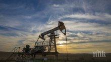 Русия, Саудитска Арабия и Обединените Арабски Емирства обсъждат доставките на петрол
