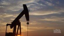 Притеснително! Цената на петрола продължава да расте