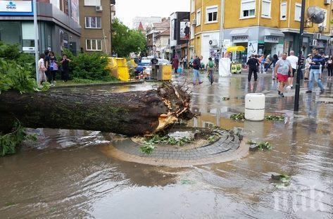 Отмениха частичното бедствено положение в Община Плевен