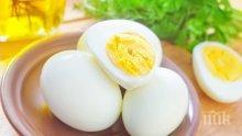 Едно яйце дневно пази от инсулт и сърдечносъдови заболявания