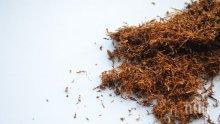 Спипаха тютюн без бандерол във Видин