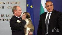 ГОРЕЩА НОВИНА! Ето с какво Борисов ще изненада Путин