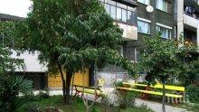 София с над 713 обновени градинки