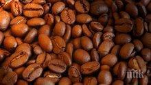 Ето каква неочаквана полза от кафето откриха учените