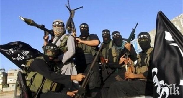 Международната коалиция срещу ИДИЛ увеличила броя на въздушните удари с над 300 процента