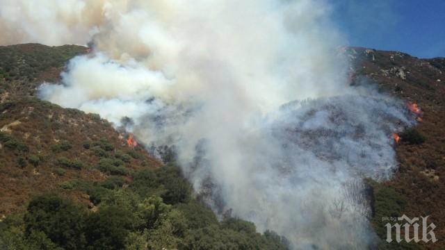 ОГНЕН АД! Пожар вилнее в Кресненското дефиле (СНИМКА)