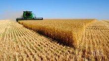 РАЗПРОДАЖБА! Русия вади за износ 500 хиляди тона зърно