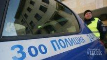 Зоополицията в Пазарджик се отчете - трима мъчители на животни отишли на съд