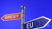 Тенденции! Рязък скок на броя на британците, които взимат паспорти от страни от ЕС
