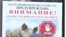 ОПАСНО! Откриха африканска чума по свинете на 60 км от България