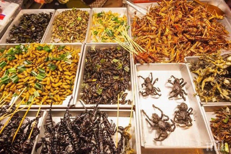 Храната на бъдещето може да се окаже от... насекоми!