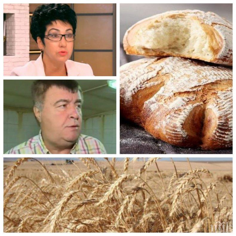 ПЪЛНА ЛУДНИЦА! Поскъпва ли хлябът или не? Шефката на федерацията и производителите с противоположни прогнози