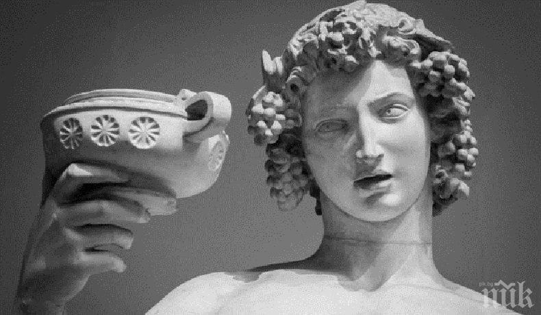 Каменна глава на бог Дионис откриха полски археолози в античния град Нове край Свищов