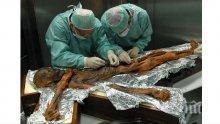 СЕНЗАЦИЯ! Учени разкриха какво е било последното ядене на ледения човек Йоци преди 5300 години