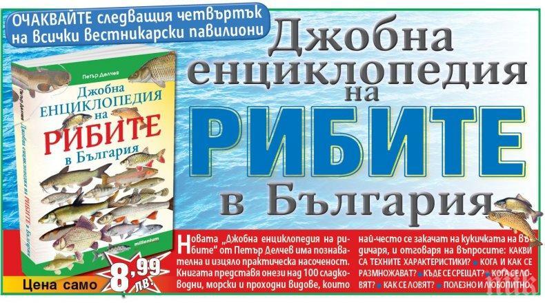 """""""Джобна енциклопедия на рибите"""" разкрива тайните на риболова в България"""