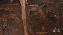 Останки от древен гигантски носорог от доледниковата епоха бяха открити в Крим
