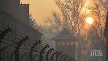Унгарски туристи опитаха да откраднат тухли от Освиенцим