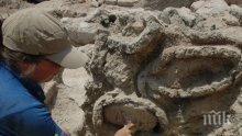 СВЕТОВНА СЕНЗАЦИЯ! Откриха гроба на Александър Македонски в Египет
