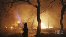 Броят на жертвите на пожарите в Атика достигна до 94 души