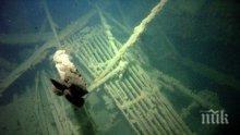 """СЕНЗАЦИОННИ КАДРИ! Вижте как изтича мазутът от потъналия кораб """"Мопанг"""" край Созопол (ВИДЕО)"""