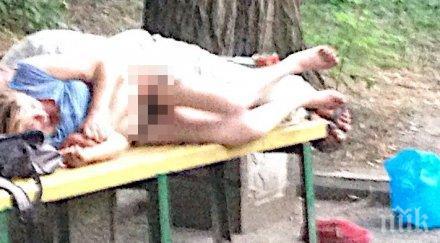 НАГРАБИХА СЕ! Загоряла двойка го направи върху пейка в парка посред бял ден (СНИМКА 18+)