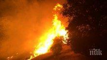 ИЗВЪНРЕДНО! Голям пожар избухна край Карлово, гъст дим се стеле над града