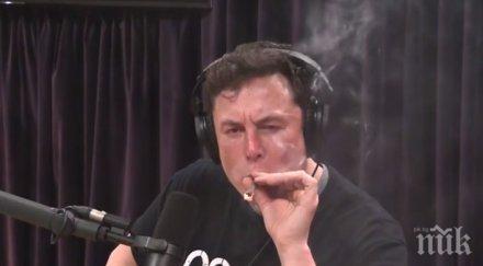 """Акциите на """"Тесла"""" се сринаха, след като Илон Мъск пуши марихуана в ефир"""