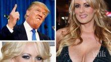 Пълно разкриване! Порноактриса издава мемоари, свързани с Доналд Тръмп