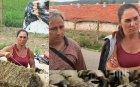 СКАНДАЛ! Провокатори нападнаха кола на ветеринарните власти: Блъскаха и драскаха возилото, заплашиха експертите
