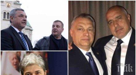 ТРУС: Трима министри със спешно искане към Борисов заради скандала с Орбан. Вероятно ще настояват да подкрепим Унгария