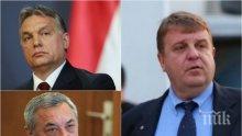 ПЪРВО В ПИК! Правителството твърдо зад Унгария в ЕС - ето пълния доклад