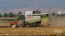 930 земеделци от Русенско имат пропуски в данъчните декларации