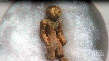 МИСТЕРИЯ! Женска фигура на милиони години хвърля в недоумение учените 119 години