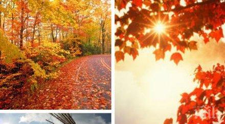 СУПЕР ПРОГНОЗА! Хубавото време се завръща - ето какви температури ни очакват до средата на октомври