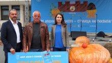 РЕКОРД! Земедец отгледа 260-килограмова тиква край Севлиево (СНИМКА)
