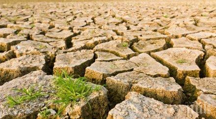 ПРОГНОЗА! Светът може да ограничи глобалното затопляне