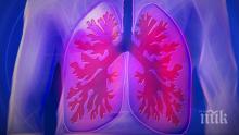 Откриха ново лечение на мултирезистентната туберкулоза