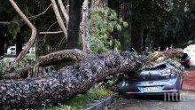 Ужасът продължава! Жертвите на лошото време в Италия станаха 11