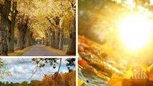 ЗЛАТНАТА ЕСЕН ПРОДЪЛЖАВА! Ноември започва с топло време и температури от 25 градуса