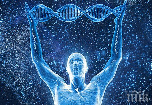 ПОГЛЕД В БЪДЕЩЕТО: Учени картографират гените на всички сложни видове