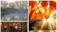 Шарената есен продължава и днес: В равнините облачно и мъгливо, а в планините слънчево. Температурите ще стигнат 18 градуса