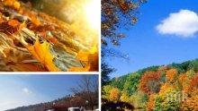 Топлата есен продължава да ни радва: Предимно слънчево с температури на места до 21 градуса