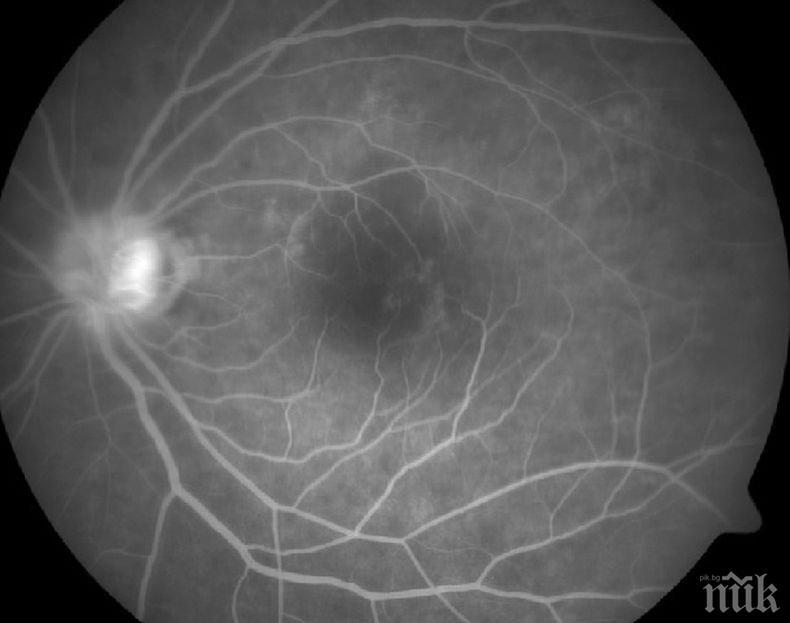 ПРОБИВ: Биолози създадоха човешка ретина